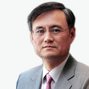 Prof Yingyi QianSenior Fellow